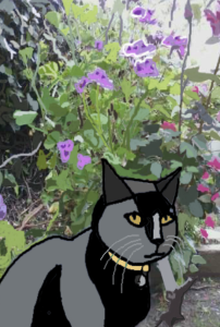 Darcy in grandmas garden4